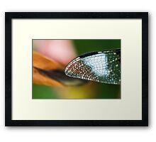 Fancy of Flight Framed Print