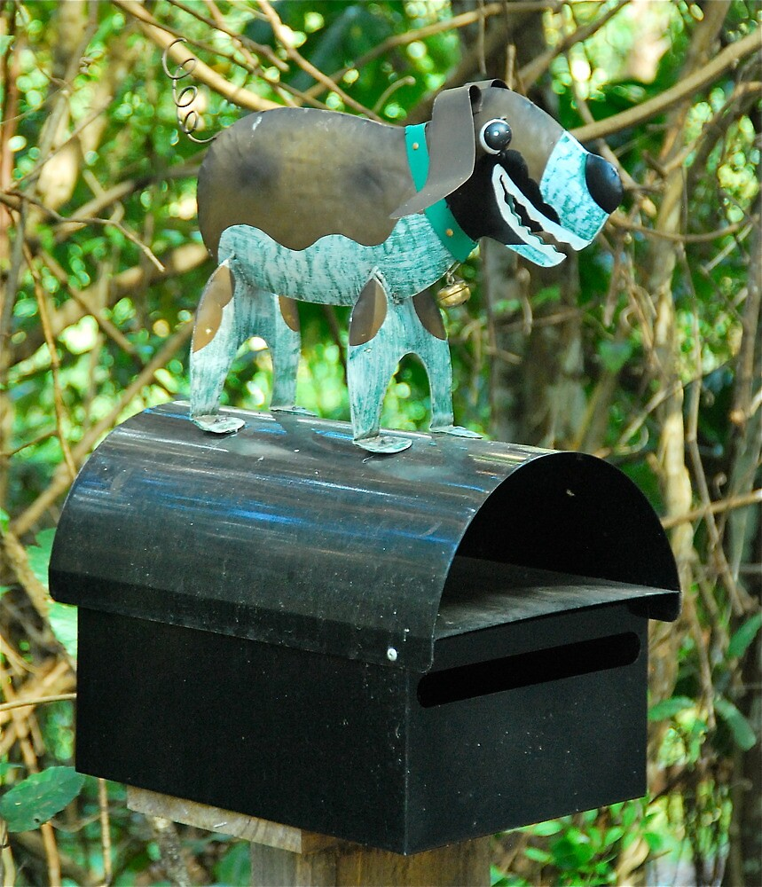 Little Woofer Box by Penny Smith