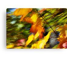 Fall burning 05 - 2012 Canvas Print