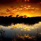 Tranquil Waters by Saija  Lehtonen