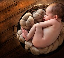 All Curled Up by Kathryn Steinhardt