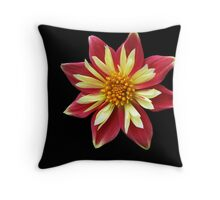 Spindle! Throw Pillow