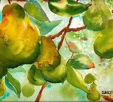 Pear Season by Sally Griffin