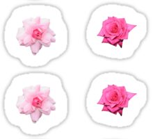 Mixed Roses and Other Flowers Sticker