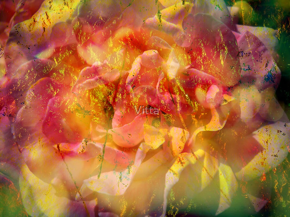 Rose with Lemon by Vitta