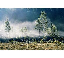 5.9.2013: September Morning III Photographic Print