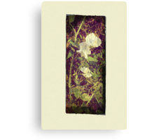 Antique Look Print of Pretty Sweet Pea flowers Canvas Print