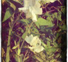 Antique Look Print of Pretty Sweet Pea flowers Sticker
