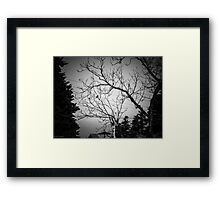 Withered Framed Print