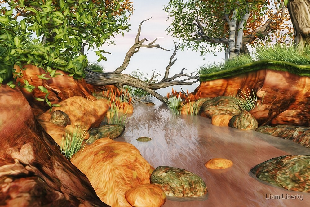 Colourful Woodland Stream by Liam Liberty