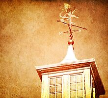 Weathervane by ElleEmDee