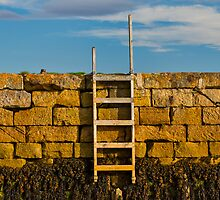 FINDHORN - STEPS TO THE SHORE by JASPERIMAGE