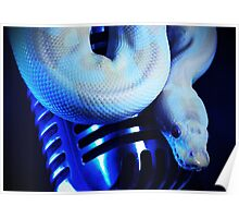 Python & a Shure 55 Poster