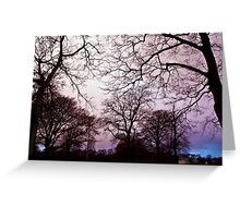 Pink Trees. Greeting Card