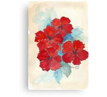 Red & Blue Hibiscus Canvas Print