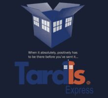 TardIs Express by B4DW0LF