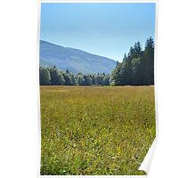 Nature Walk Poster