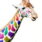Colourful Giraffe  by wendywoo1972