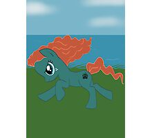 Merida Pony Photographic Print