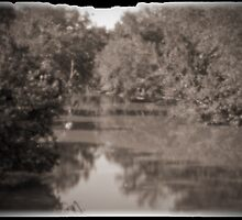 Pinhole - Up Stream by Otto Danby II