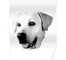 Labrador Retriever Dog Engraving Poster