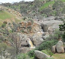 Two Waterfalls! Mannum Gorge, rural hinterland.  by Rita Blom