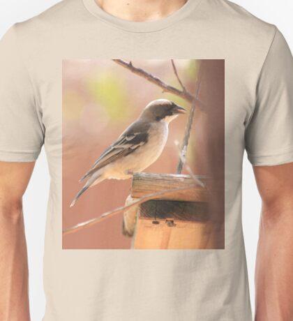 White-browed Sparrow Weaver (Plocepasser mahali) Unisex T-Shirt
