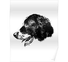 Happy Retriever Dog Digital Engraving Poster