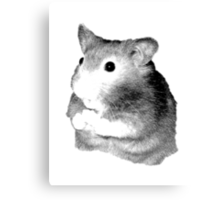 Golden Hamster Digital Image and Engraving Canvas Print
