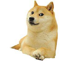 Doge - Meme Photographic Print