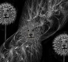 ☸•DANDY LIONS SEEDS OF AFFECTION PICTURE/ CARD•☸ by ✿✿ Bonita ✿✿ ђєℓℓσ