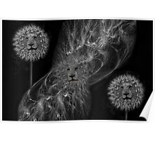 ☸•DANDY LIONS SEEDS OF AFFECTION PICTURE/ CARD•☸ Poster