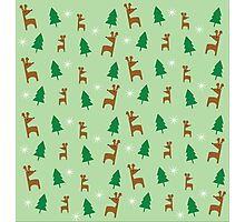 Reindeer Forest In Mint Photographic Print