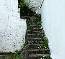 Stairs, Falmouth by Ludwig Wagner