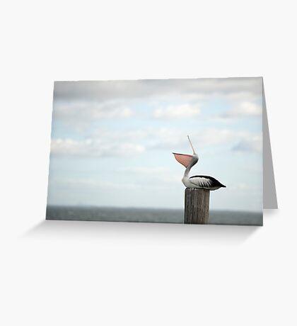 ha ha ha - laughing pelican Greeting Card
