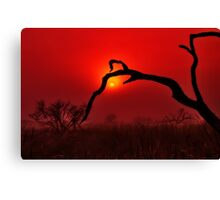 """Dawn On The Floodplain"" Canvas Print"