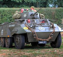 T17 Staghound  by larry flewers