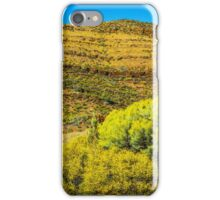 Layers of History iPhone Case/Skin
