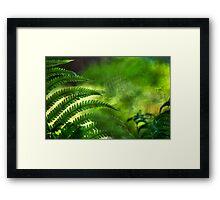 Fern Leaf. Healing Art Framed Print