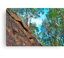 Rock Face Canvas Print