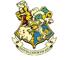 Pokemon Harry Potter by Andreadebole94