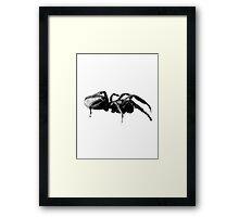 Creepy Crawly Tarantula Spider Digital Engraving Image Framed Print