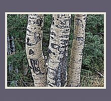 Aspen Trunks (Plum) by Hannelore Dean