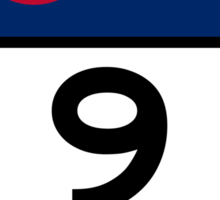 CO-9 CAÑON CITY Sticker