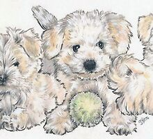 Bichon Frise Puppies by BarbBarcikKeith