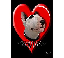 LOVE for my Bull Terrier Photographic Print