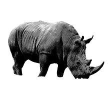 Grazing Rhinoceros. Wildlife Digital Engraving Image by digitaleclectic