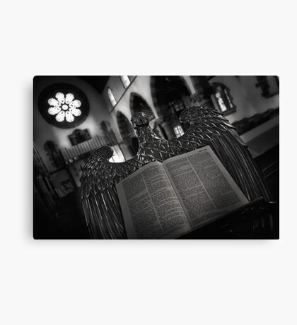 Guardian of the Book Canvas Print