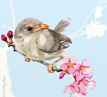 Spring Sparrow - 2012 by Sue Flask