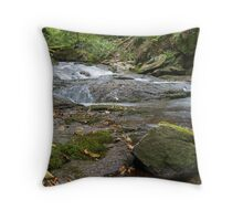 Bistriski vintgar, Slovenia Throw Pillow